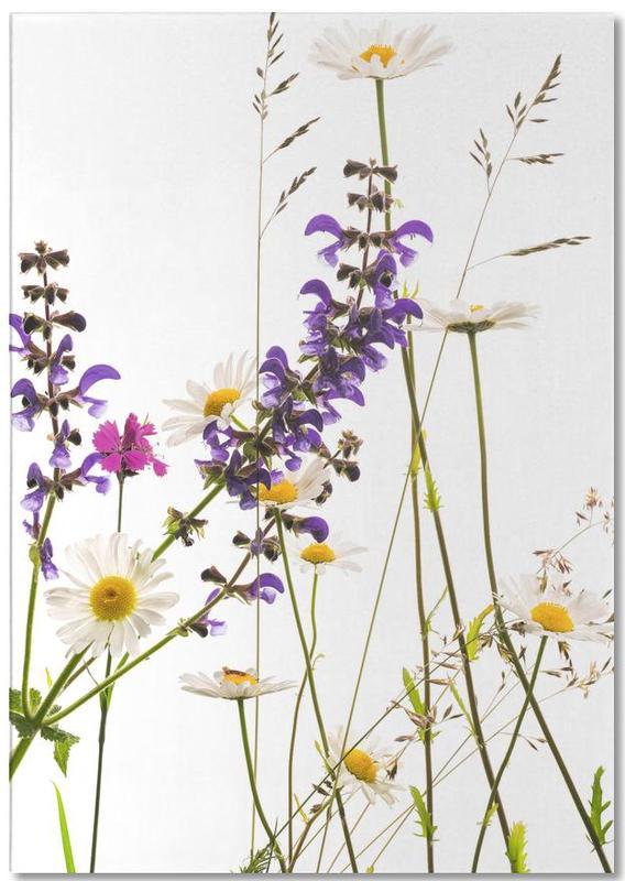 Flora - Margerite -Notizblock