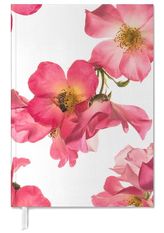 Flora - Rose 2 -Terminplaner