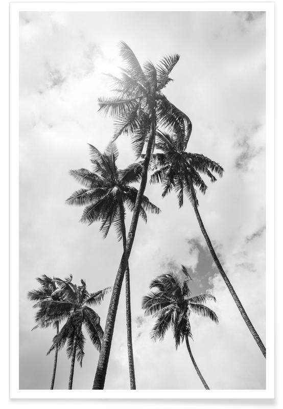 Palme Bounty affiche