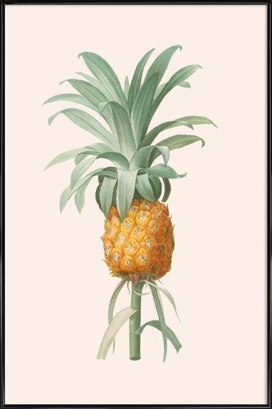 Ananas affiche encadrée