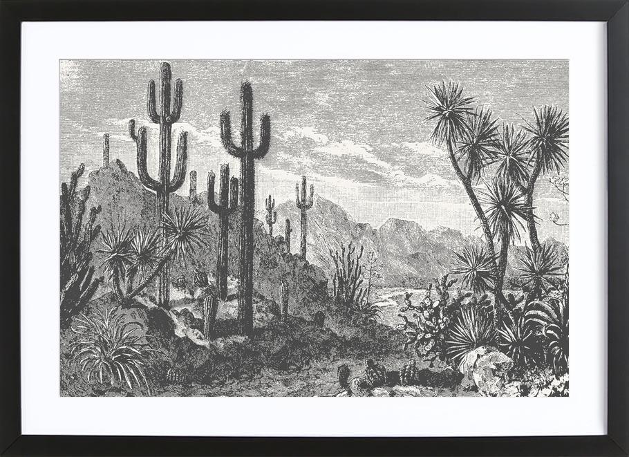 Cacti in Mountains ingelijste print