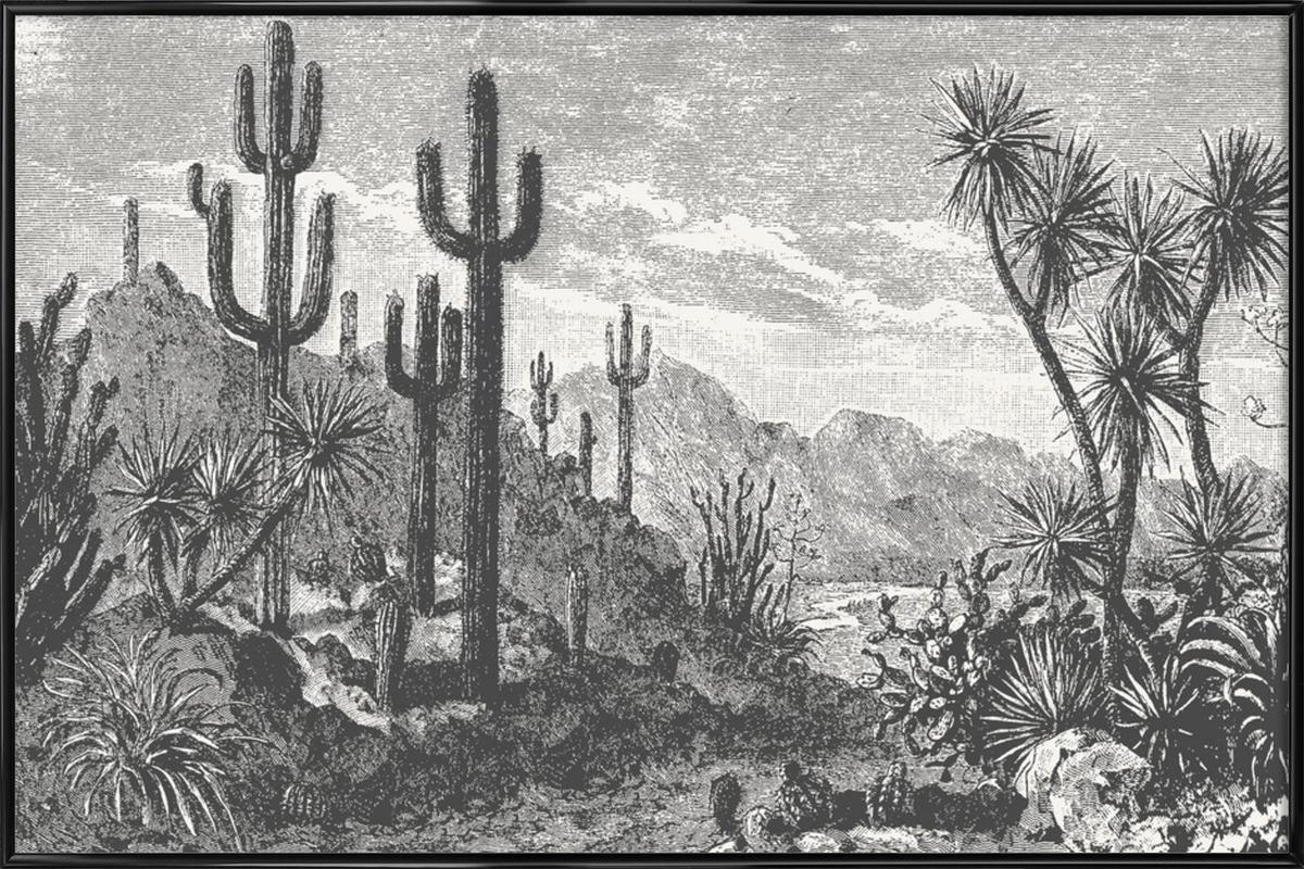 Cacti in Mountains ingelijste poster