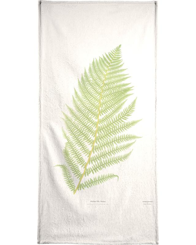 Ferns 2 Beach Towel