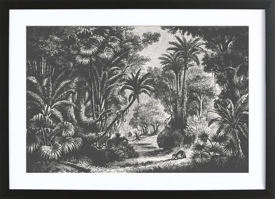 Indian Jungle ingelijste print