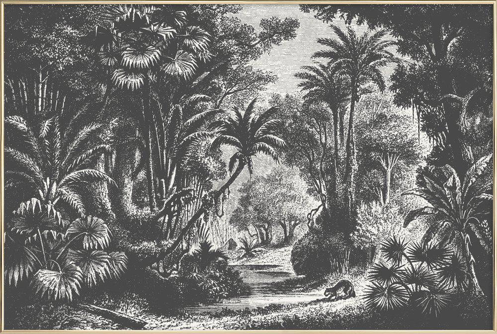 Indian Jungle Poster in Aluminium Frame