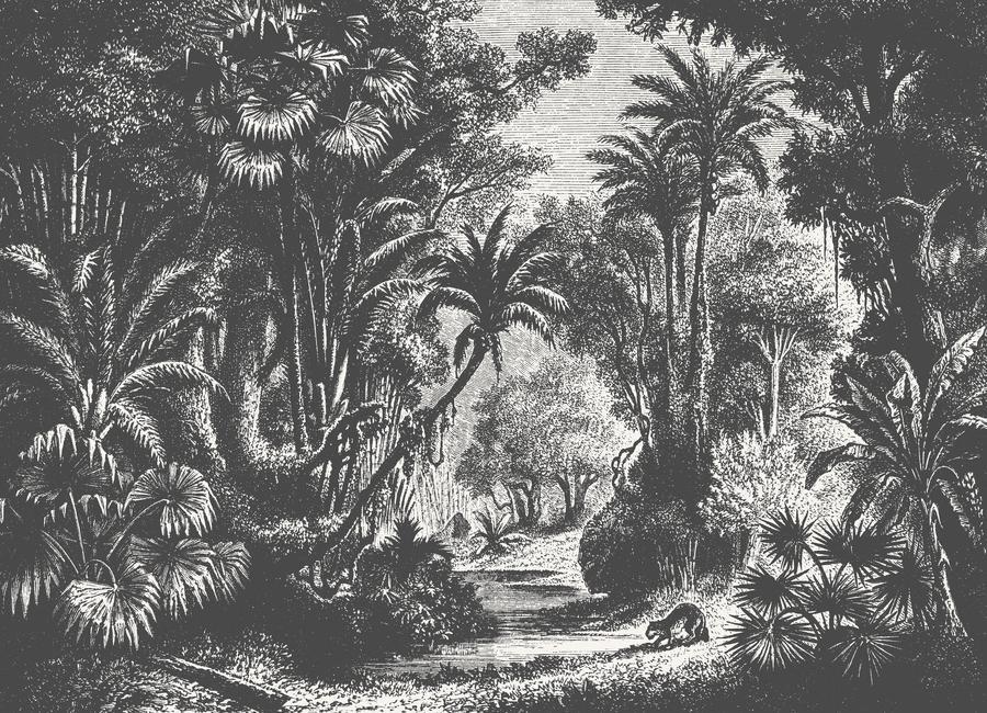 Indian Jungle -Leinwandbild