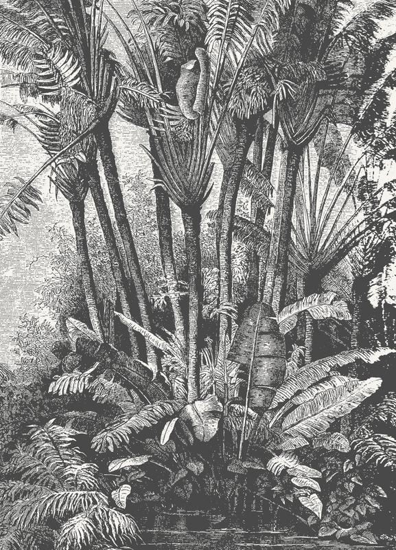 Palms in Water canvas doek