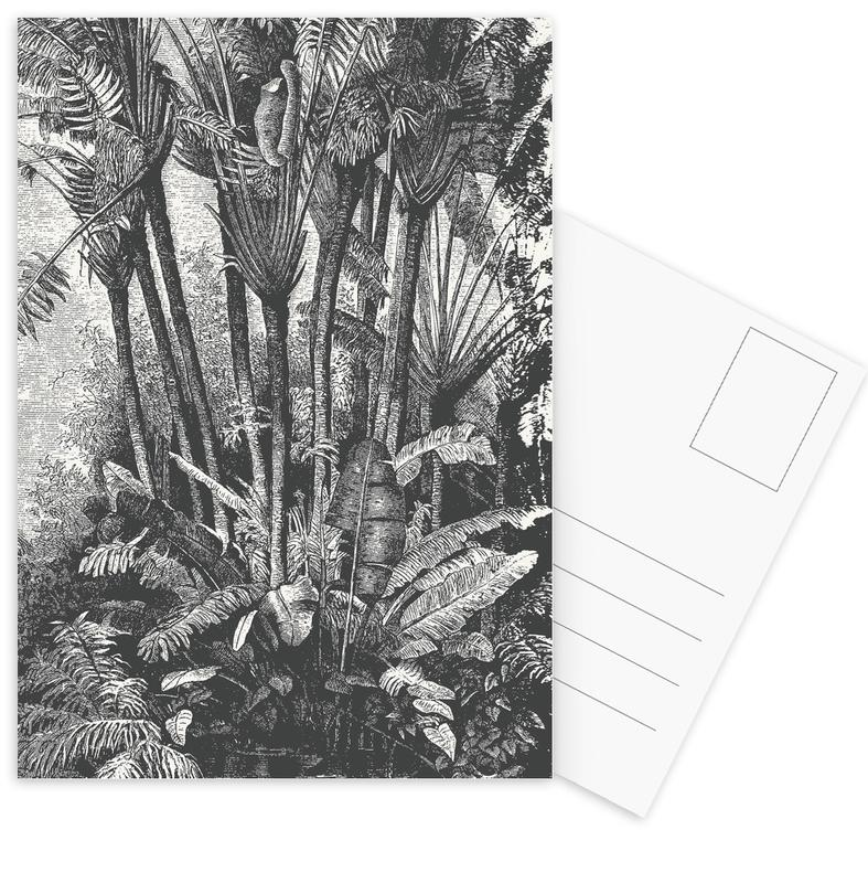 Palms in Water Postcard Set