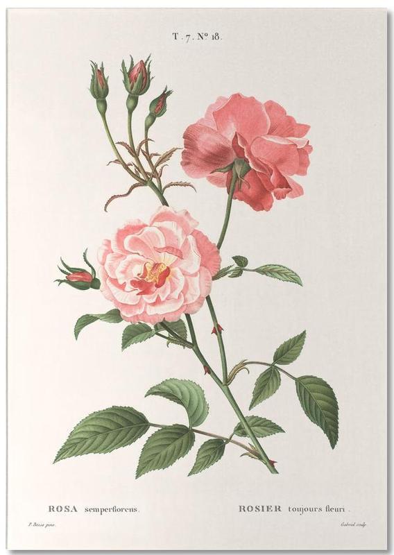 Rosier - Toujours Fleuri Notepad