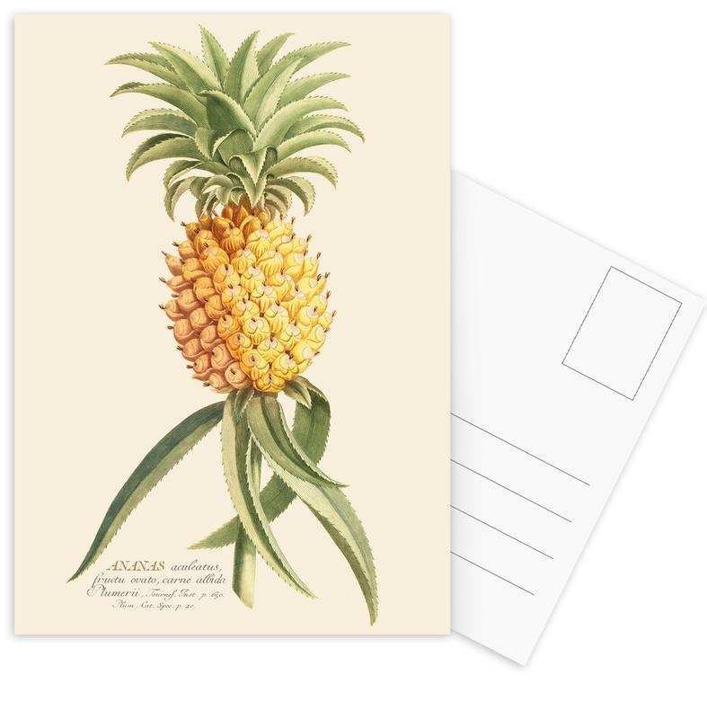 Pineapples, Pineapple 2 Postcard Set