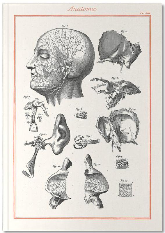, Anatomy Notebook
