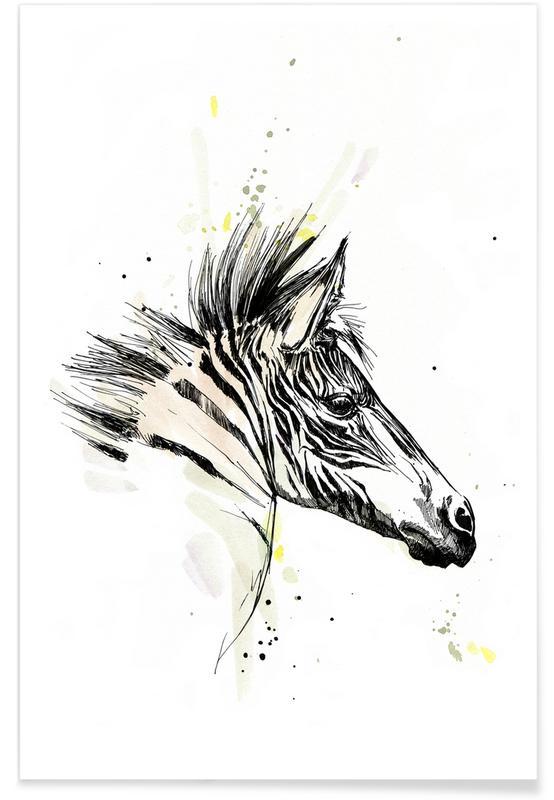 Zebras, Zaba -Poster