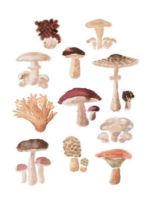 Mushrooms -Leinwandbild