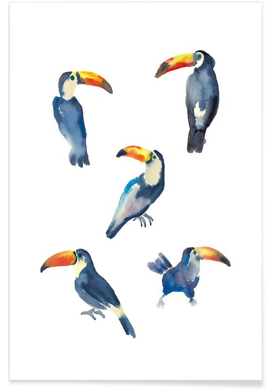 Tukane, Toucan -Poster