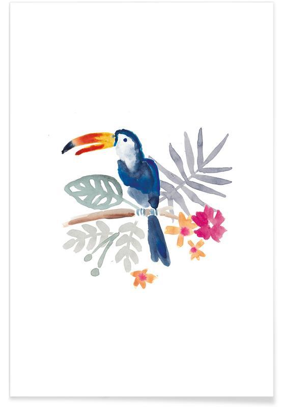 Toekans, Toucan Jungle poster