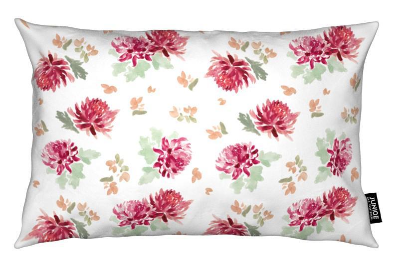 , Chrysanthemum