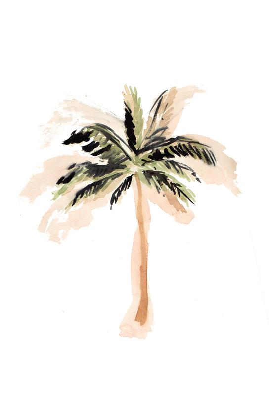 Palm Tree 3 Aluminium Print