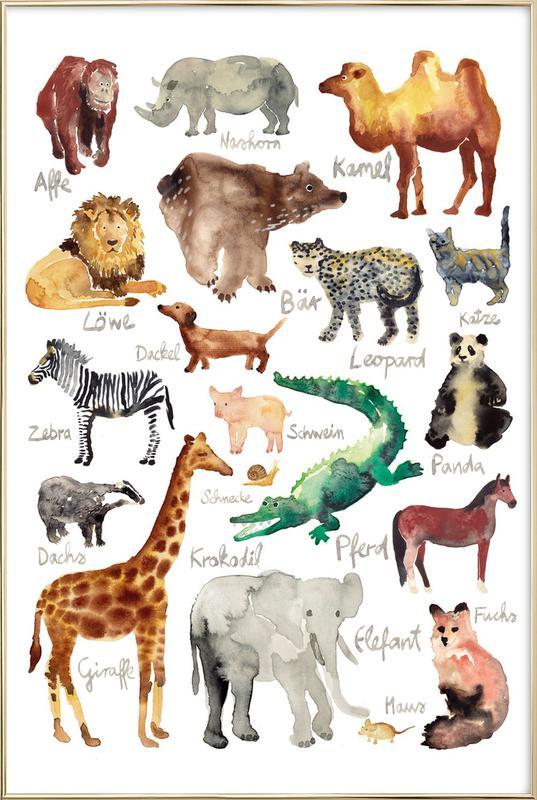 The Animal Kingdom -Poster im Alurahmen
