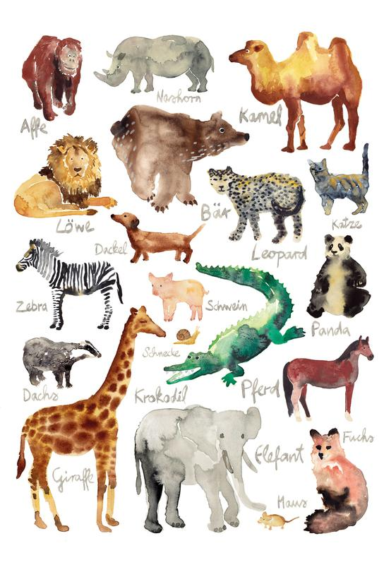 The Animal Kingdom Aluminium Print