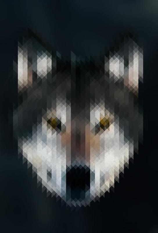 Wolf -Alubild