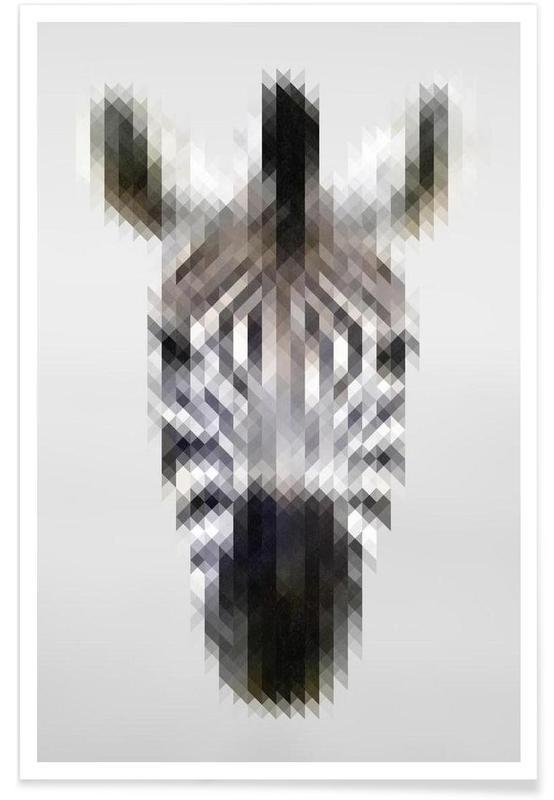 Zèbres, Animaux de safari, Zebra affiche