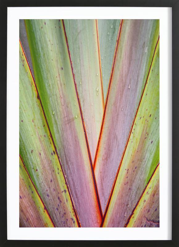 Flax Pattern Framed Print