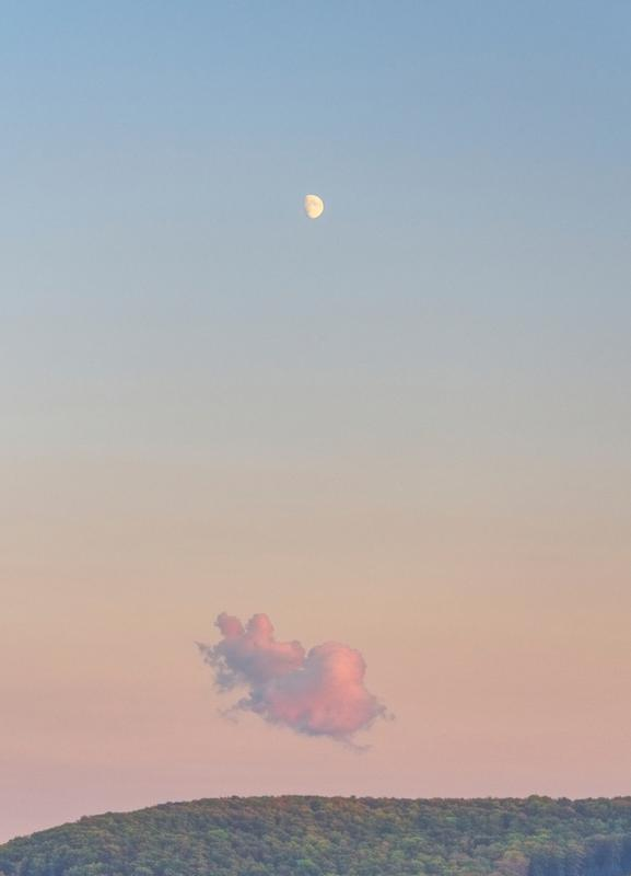 Forest Cloud Moon Canvas Print