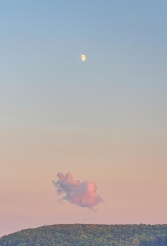 Forest Cloud Moon Aluminium Print