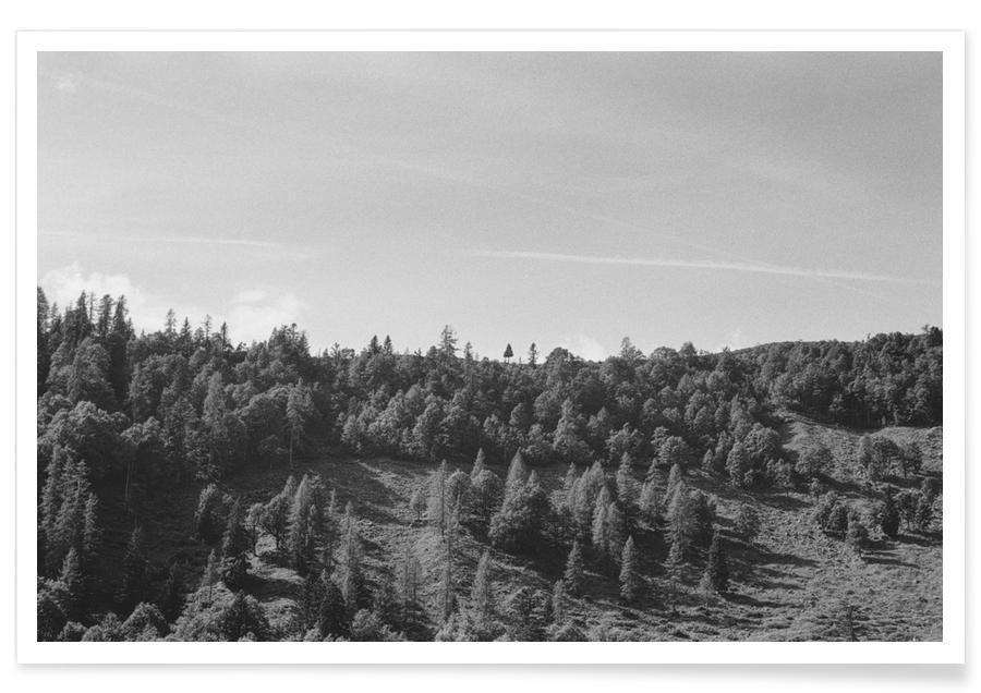 Schwarz & Weiß, Wälder, Trees On The Ridge -Poster