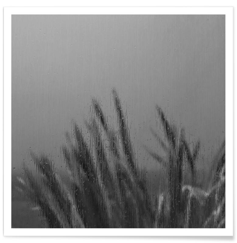 Sort & hvidt, Blade & planter, Lazy Day Plakat