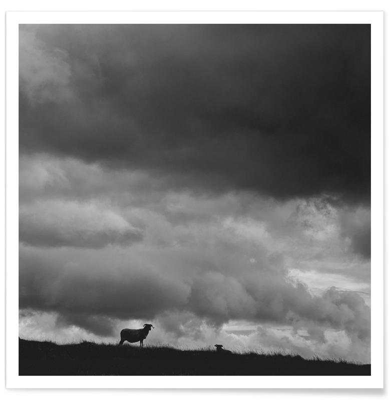 Noir & blanc, Ciels & nuages, Neighbourhood affiche