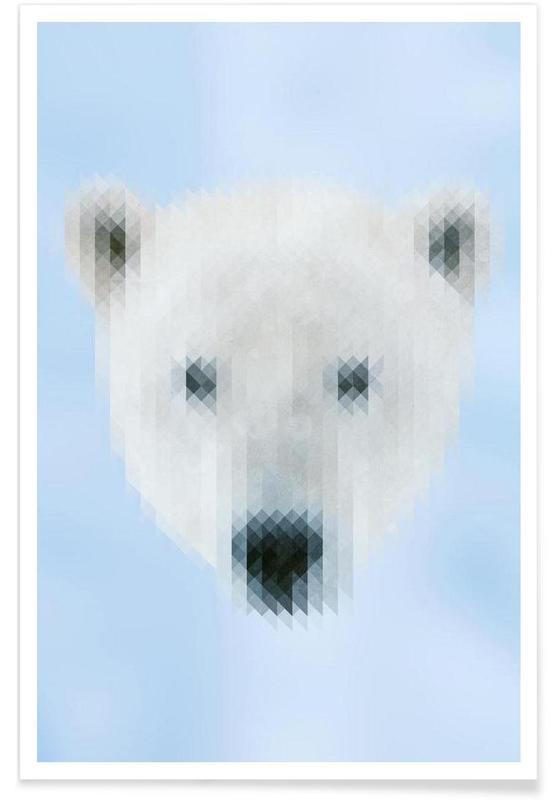 Ours, Polarbear affiche