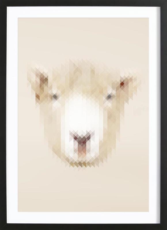 Sheep ingelijste print