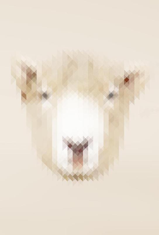Sheep Aluminium Print