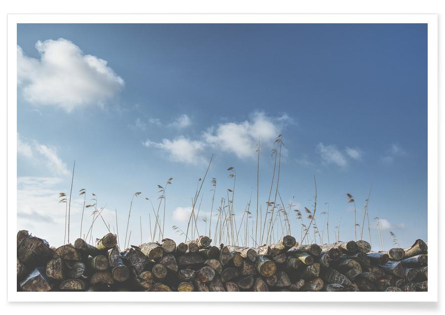 Logs & Reed -Poster