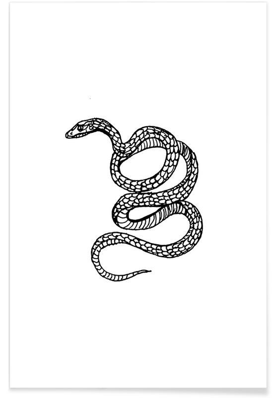 Schwarz & Weiß, Street Art, Snake White -Poster