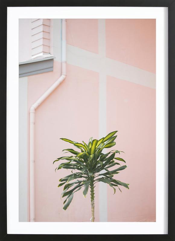 Pastel Palms Framed Print