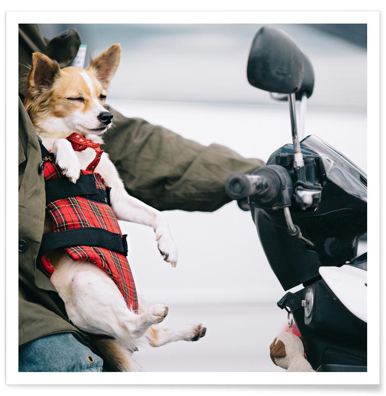 Motorfietsen, Honden, Ride or Die poster