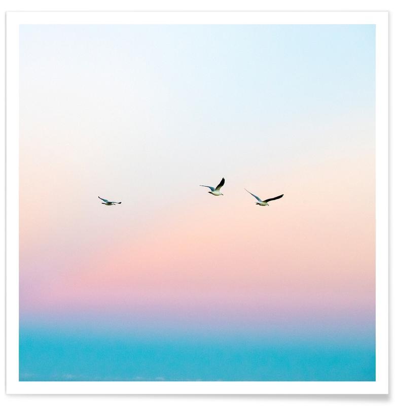 Meeuwen, Lucht en wolken, Skyporn poster