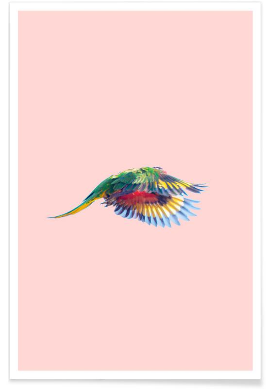 Pink Parrot 2 Poster