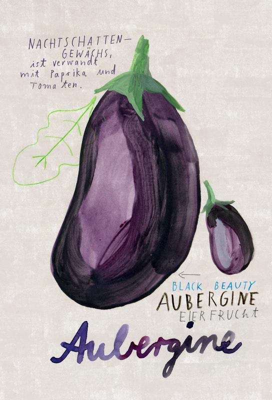 Aubergine -Acrylglasbild