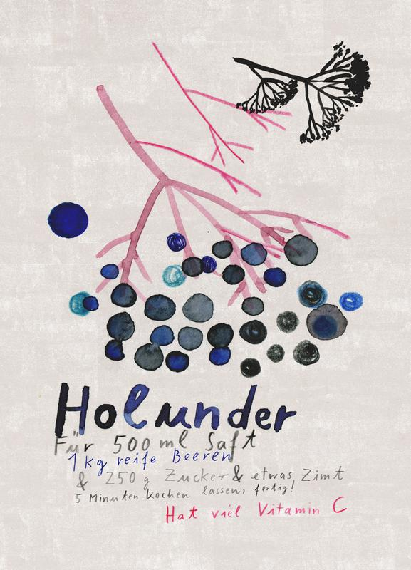 Hollunder Canvas Print