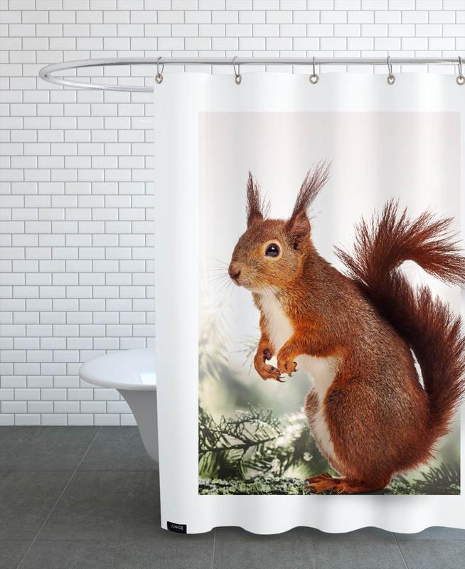 Eichhörnchen, Kinderzimmer & Kunst für Kinder, SQUIRREL -Duschvorhang