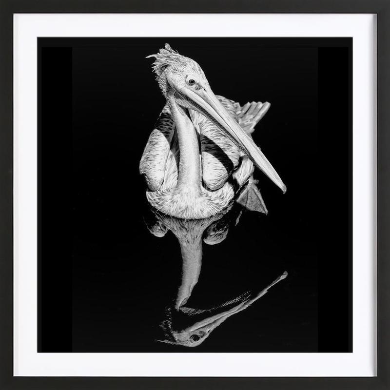 The equated Framed Print
