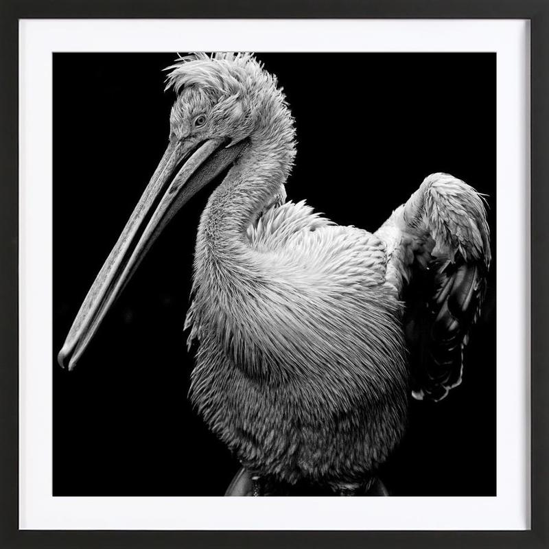 The majestic Framed Print