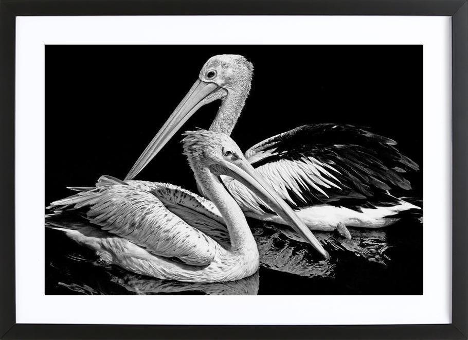 The nonchalant Framed Print