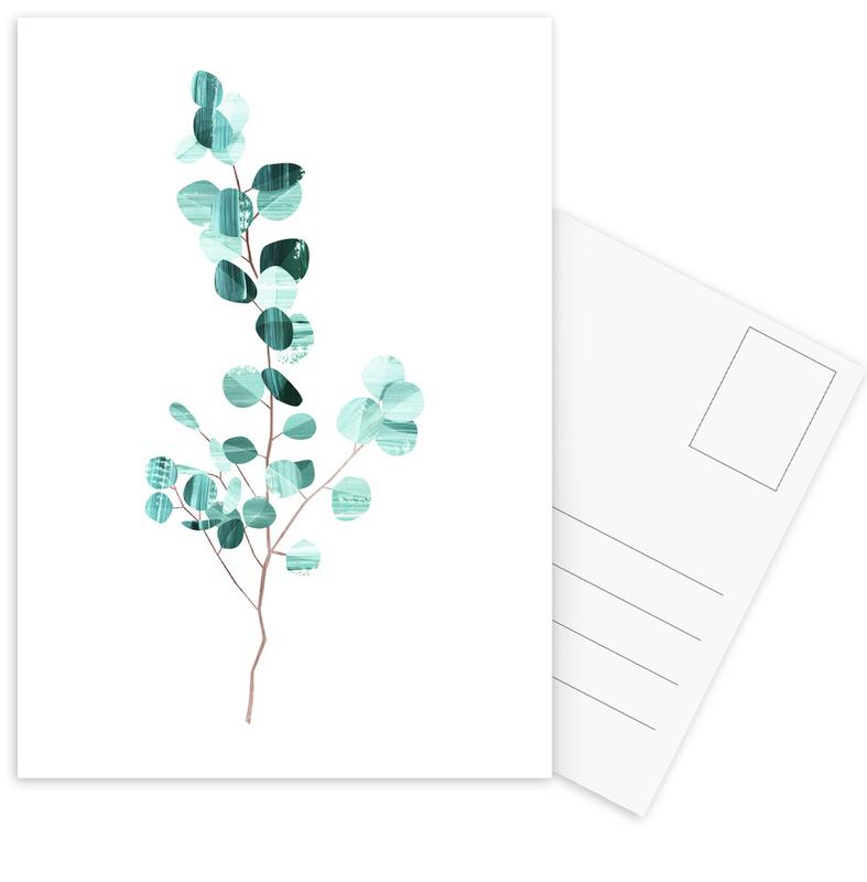 Eucalyptus -Postkartenset
