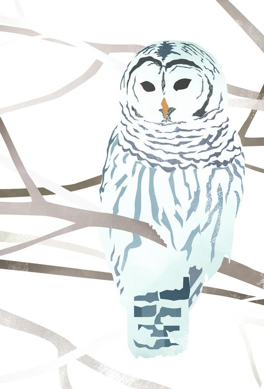 White Owl -Alubild