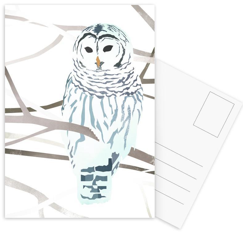 Chouettes, White Owl cartes postales