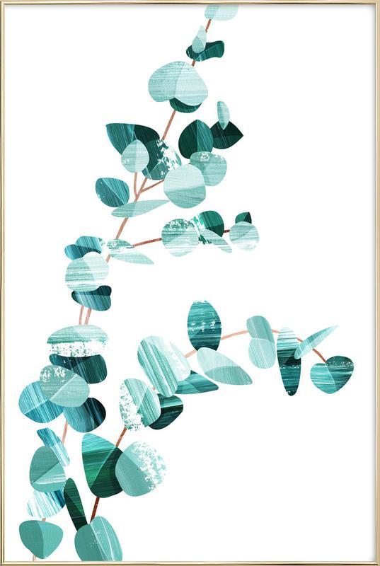 Eucalyptus affiche sous cadre en aluminium